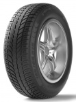 BFGoodrich  G-GRIP ALL SEASON GO 205/50 R17 93 V Letné